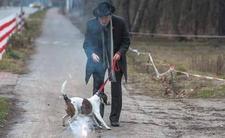 Janusz Korwin-Mikke znęcał się nad psem petardami? To jego odpowiedź na zakaz fajerwerków w Sylwestra. Pies podobno nie był zestresowany hukiem.