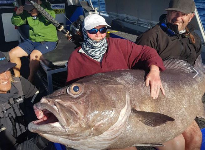 Rekordowo wielka ryba