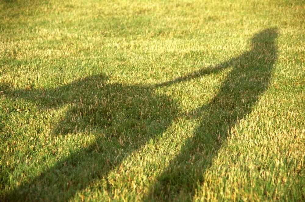 seks pozycja na pieska zdjęcie