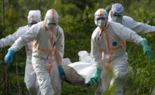 Choroba X to najgorsza epidemia w historii?