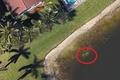 Google Maps prawdę Ci powie. Tym razem odnalazło... zwłoki