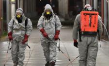 Koronawirus SADS-CoV atakuje. Grozi nam globalna biegunka?