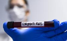Koronawirus i szokujący nowy raport - odkryli źródło COVID-19?