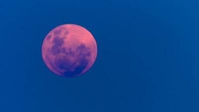 Truskawkowy księżyc już dziś na niebie. Wyjątkowe zjawisko