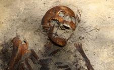 Znaleźli zwłoki torturowanego człowieka. Straszne obrażenia