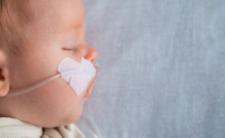 Skatowane niemowlę w Malborku. Dziewczynka walczy o życie
