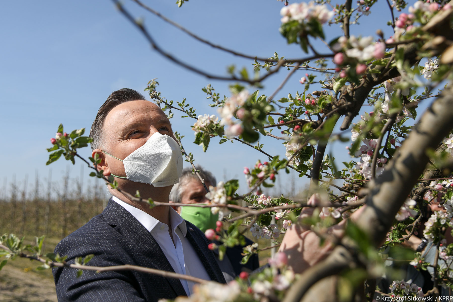 Andrzej Duda w sadzie