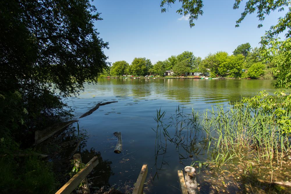 Miejsce, w którym odnaleziono głowę Danuty - jeziorko Czerniakowskie, fot. East News