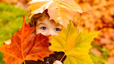 Idzie piękna złota jesień! Wybuch ciepła już za kilka dni