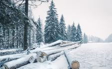 Zima zaatakowała. Spadło 30 cm śniegu, będzie mroźno [ZDJĘCIA]