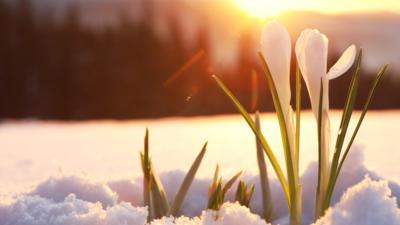 Diametralną zmiana pogody. Nadciąga wiosna