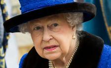 Królowa usycha z tęsknoty