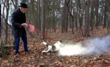 Korwin tresuje psa petardami - znowu narobił dymu!