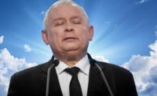 PiS miażdży opozycję