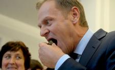 Donald Tusk pożre PiS ze smakiem? Już się szykuje do uczty