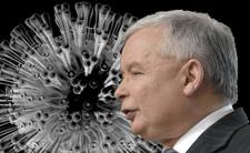 Wyborów nie będzie. Kaczyński dogadał się z Gowinem