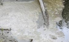 Awaria oczyszczalni ścieków Czajka w Warszawie - wypłynęły szokujące fakty