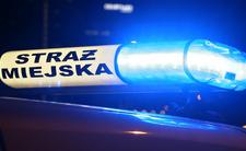 Baraszkowali w centrum Krakowa. Interweniowała straż miejska