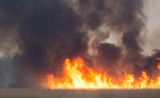 Katastrofa Ekologiczna w Polsce! Gigantyczny pożar trawi Podlasie