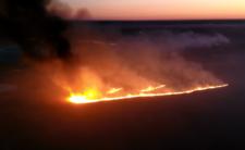 Pożar Biebrzańskiego Parku Narodowego - to robota podpalacza?