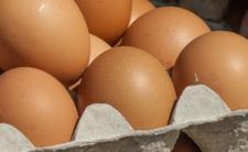 Salmonella wykryta w jajkach - znacie zasady obchodzenia się z jajami w kuchni?