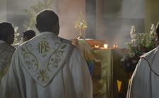 Kuria prosi o wybaczenie. Zdradza przypadki pedofilii wśród księży