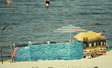 Niebezpieczna INWAZJA nad Bałtykiem. Zbliża się katastrofa ekologiczna