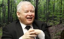 PiS chce zmniejszyś Świętokrzyski Park Narodowy - 5 hektarów przejmą ojcowie oblaci