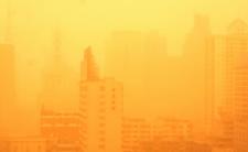 Pogoda w poniedziałek i afrykańskie powietrze w Polsce. Apokalipsa dla alergików