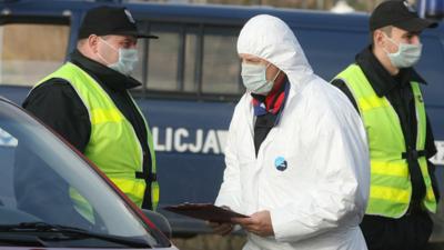 Ptasia grypa w Polsce - epidemia zabija ptaki