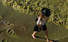 Zakwit sinic. GiS zamyka kolejne kąpieliska, zakaz wchodzenia do wody