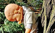 Tajemnicze rytuały pod Kaliszem. W lesie wisiały upiorne lalki