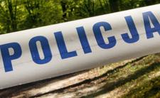 Zakrwawiona nastolatka została znaleziona w lesie. Koszmarne sceny