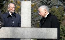 Zamknięte cmentarze na 1 listopada? Koronawirus sprawia, że cała Polska stoi nad grobem