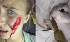Weganka i włamanie na fermę królików - rzeź i masakra