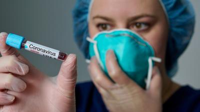 Atak nietoperzy na naukowców. Tak zrodził się koronawirus?