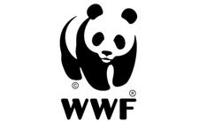 Bojówki WWF torturowały i zabijały kłusowników? Szokujące śledztwo