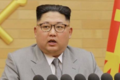 Ujawniła co Kim Dzong Un robi ze zwłokami