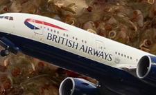 Narzekacie na jedzenie w samolocie? Linie British Airlines mają szokujący catering