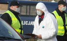 Epidemia ptasiej grypy powraca - wirus atakuje w Polsce