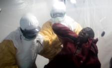 Choroby tropikalne uderzają w Europie - małpia ospa, denga i gorączka Zachodniego Nilu